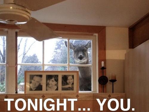 tonight-you